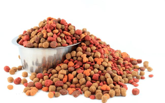 犬に必要な餌の量は犬によって違うのを知っていますか?愛犬の健康を守るために必要な餌の量・カロリーを確認しよう