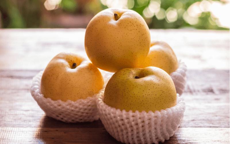 犬も大好き!梨をあげるときの注意点4つと梨を食べたときの効果・効能7つ