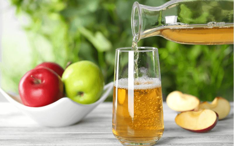 犬にリンゴジュースを飲ませてもいいの?飲ませてもいい種類と飲ませるときの注意点6つ