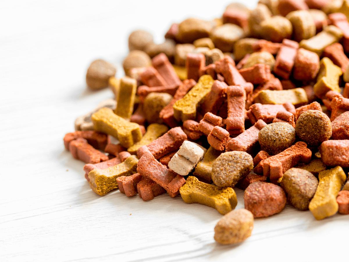AAFCOとは?ペットフードを選ぶひとつの基準として総合栄養食のドッグフードを取り入れよう