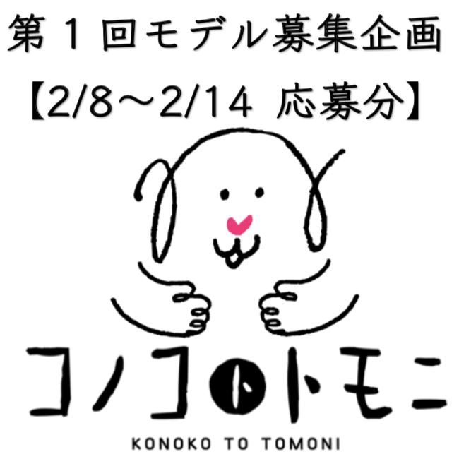 【モデル募集】我が家のコノコ大公開⑤【2019/2/8〜2/14応募分】