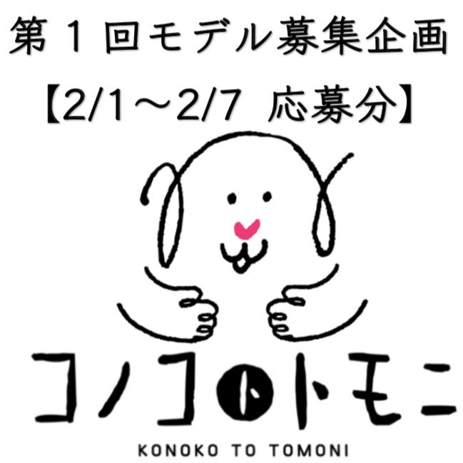 【モデル募集】我が家のコノコ大公開④【2019/2/1〜2/7応募分】